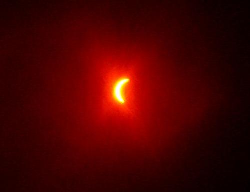 最大日食付近をフィルム越しでみると・・・