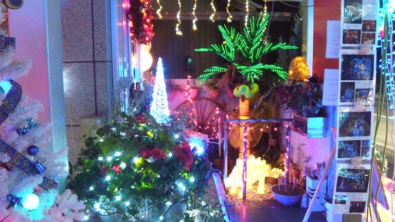 イルミ2009玄関入り口