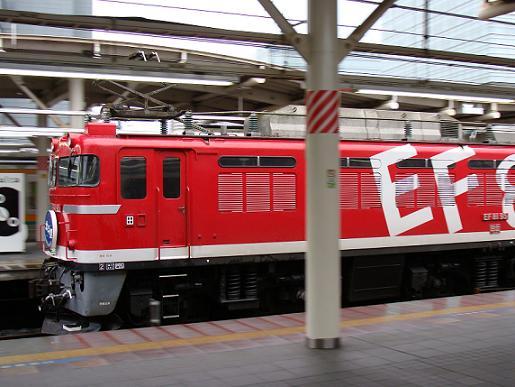 EF81-95.JPG