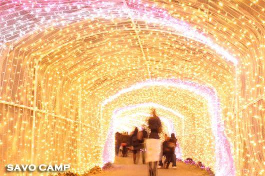 イルミリオン(光のトンネル)