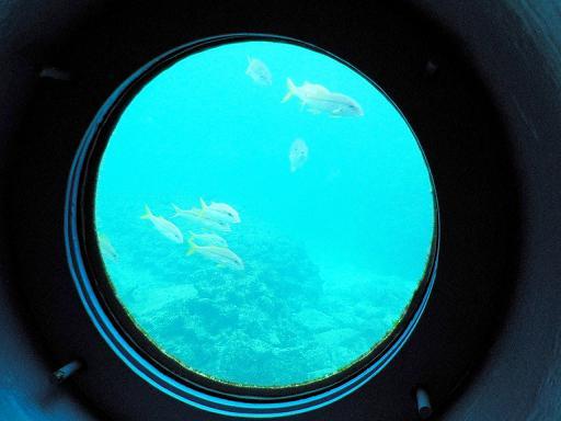 海中展望塔からの景色