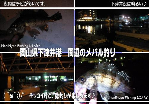 h21下津井のメバル釣り