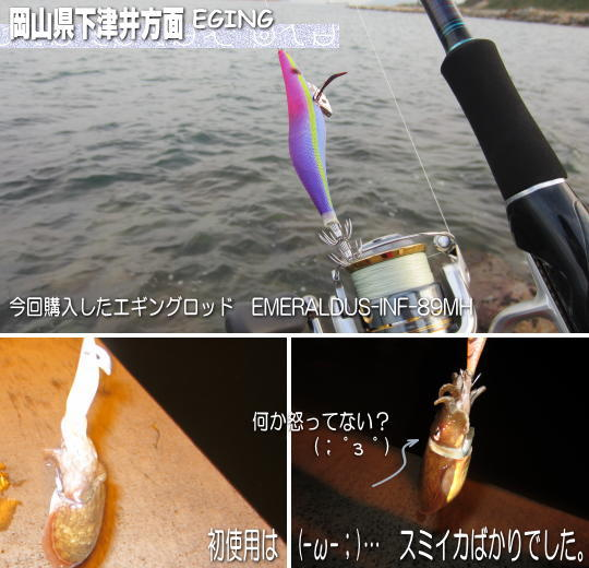 h23.11下津井のエギング情報
