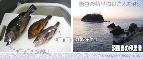 h23.01淡路島のメバル釣り
