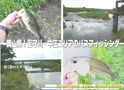 h20.09岡山県の用水路バスフィッシング