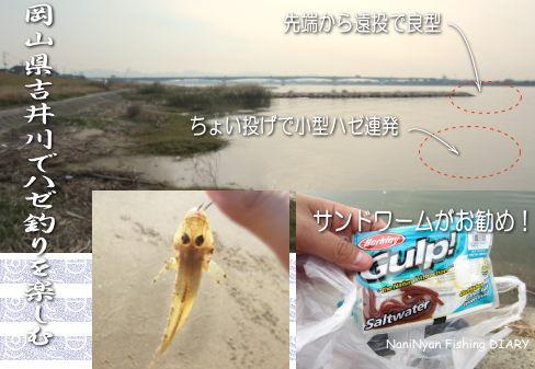 h23.12.01吉井川のハゼ釣り