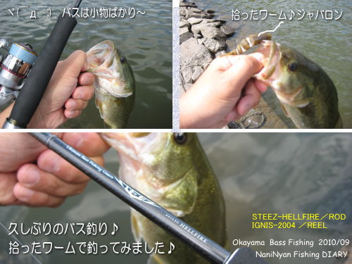 h22.09野池のバス釣り