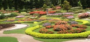 P6220313庭園.jpg