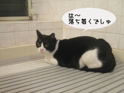 お風呂場.jpg