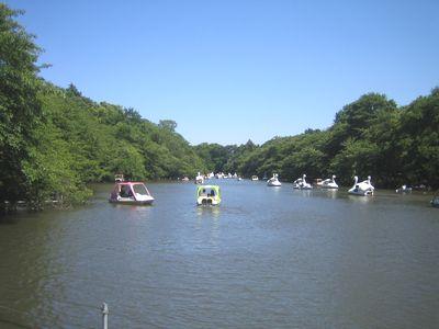 井の頭公園.jpg