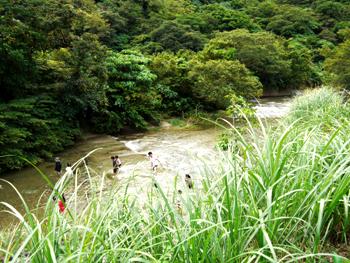 川で遊ぶ子どもら