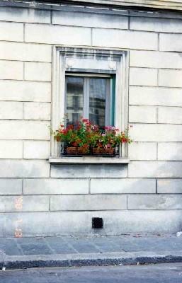 finestra 1