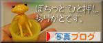 ブログ村写真ブログ fortune.jpg