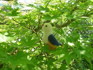 くるみ鳥2・小.JPG
