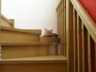 ぼん階段遠景・小.JPG