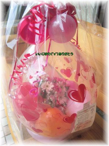 ☆かわいいお花☆