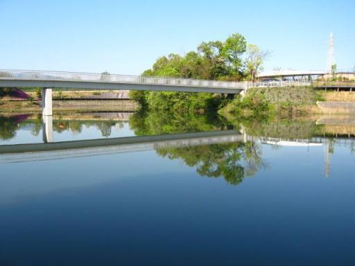 三兼池公園の橋