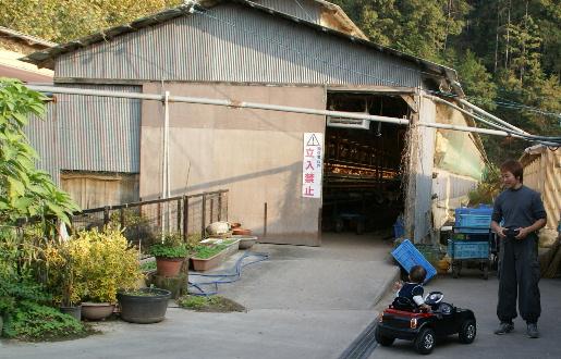 悠翔の愛車(20111114)1