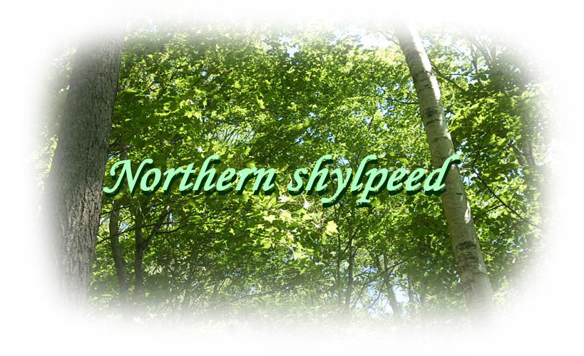 Northern shylpeed