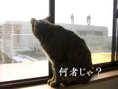 oshigoto3.jpg