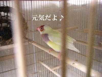 2007-9-5-5.jpg