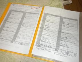 黄ファイル