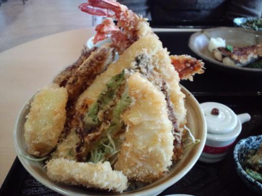 ソース丼の拡大 1・30・2010.jpg