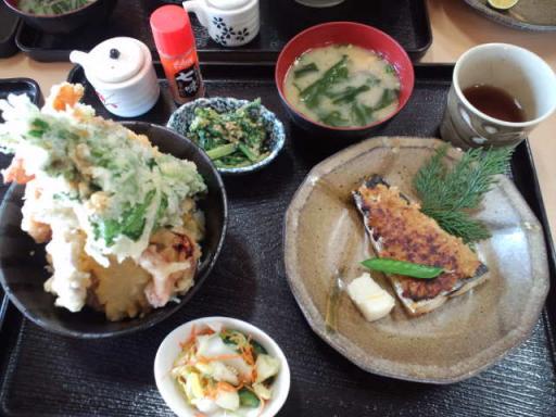 剣山(天丼) 1・30・2010.jpg