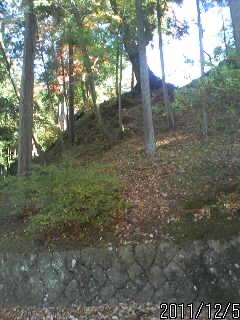 三の丸の崖