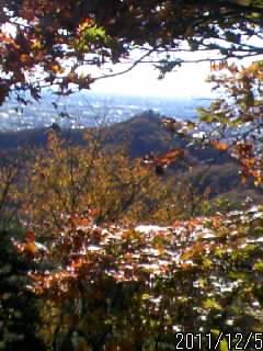 南城址からの眺め
