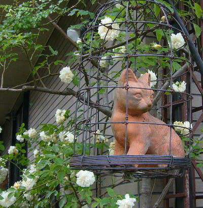 カゴのネコ