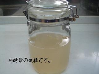 07年桃酵母 液種