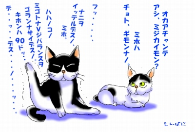 s- アシ、ミジカイモン??.jpg