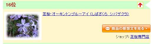 ブルーアイ100924.jpg