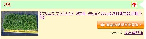 タマリュウ100917.jpg