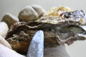 殻つき牡蠣開け方3