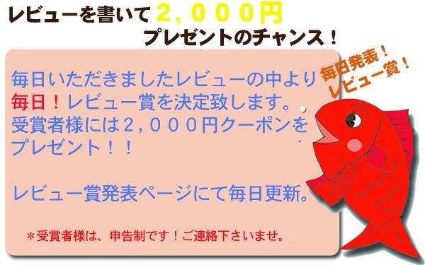 レビュー賞で2000円クーポンプレゼント!