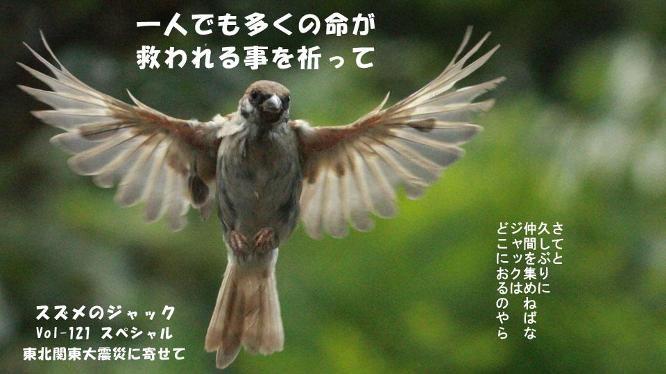 r-jack-sparrow-121-for-japan-1.jpg