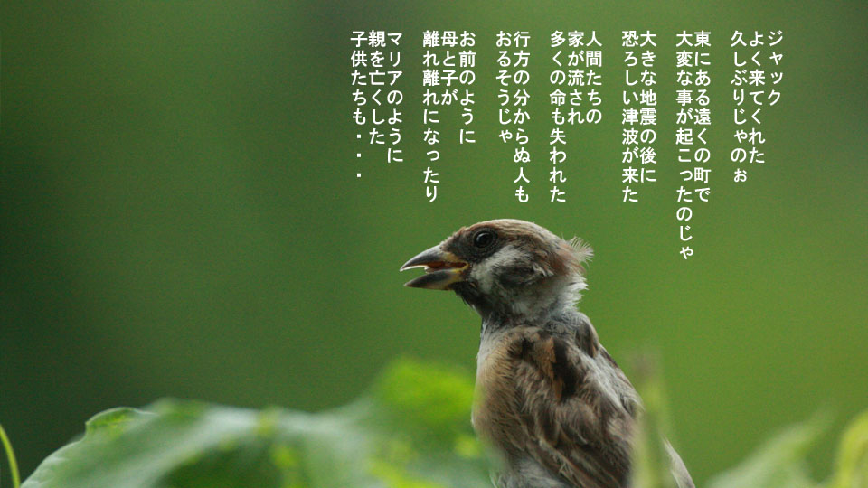 r-jack-sparrow-121-for-japan-3.jpg