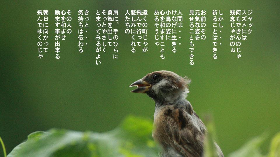 r-jack-sparrow-121-for-japan-5.jpg