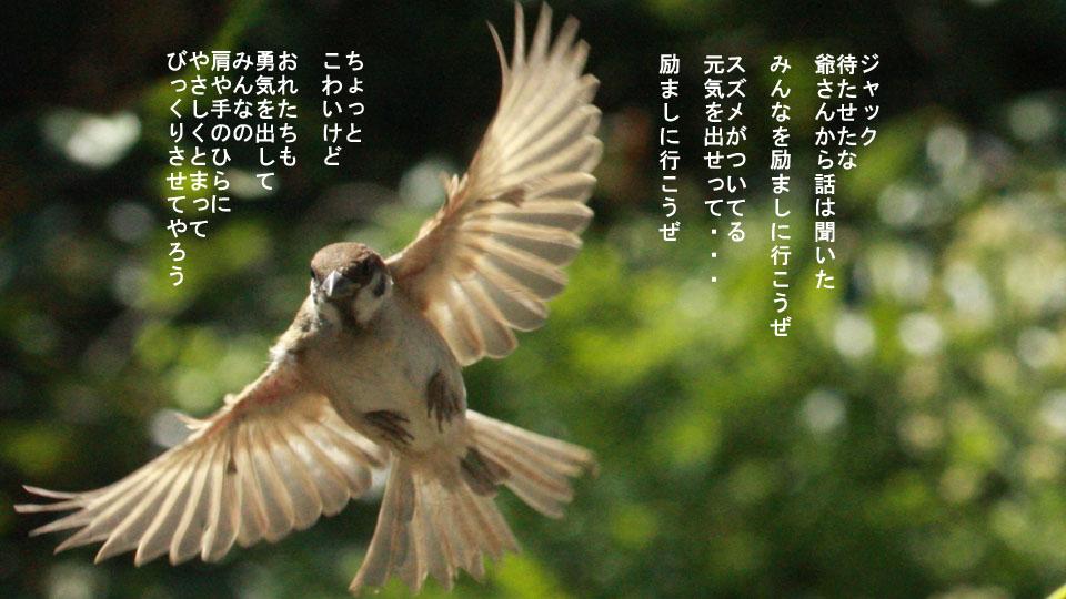 r-jack-sparrow-121-for-japan-7.jpg