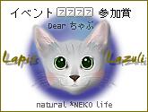 2005-06-14 10:44:08