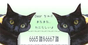 2005-04-30 12:50:23