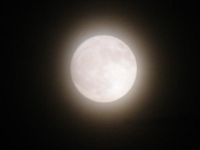 2005/6/21 ほぼ満月かな?
