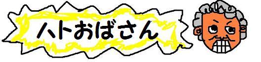 ハト.JPG