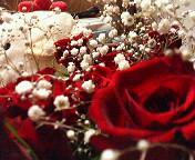 薔薇の中でかくれんぼ