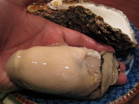 天然岩牡蠣と手