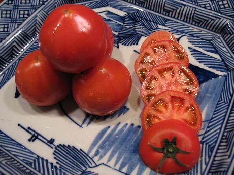 加藤さんトマト