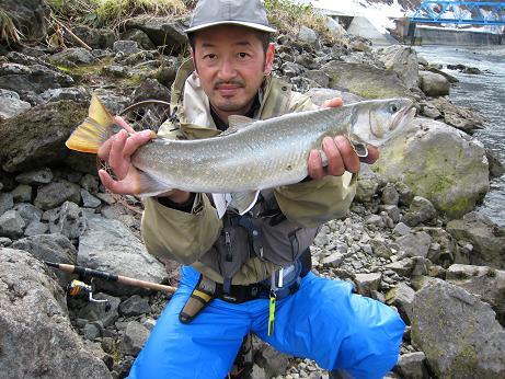 大鳥ダム 天然岩魚 雌 54cm