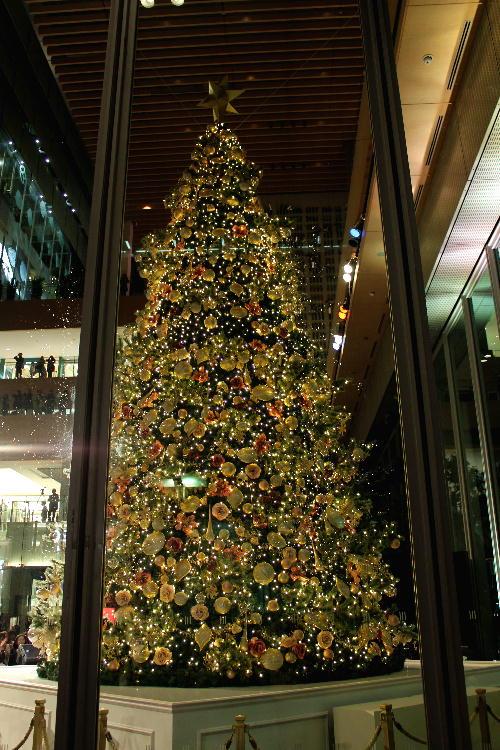 丸ビルの巨大クリスマスツリー